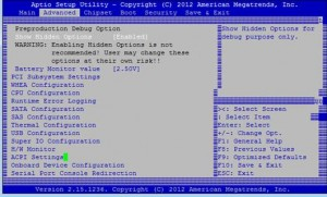 BIOS Screenshot 1