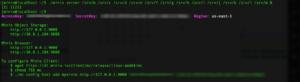 Minio Server Running